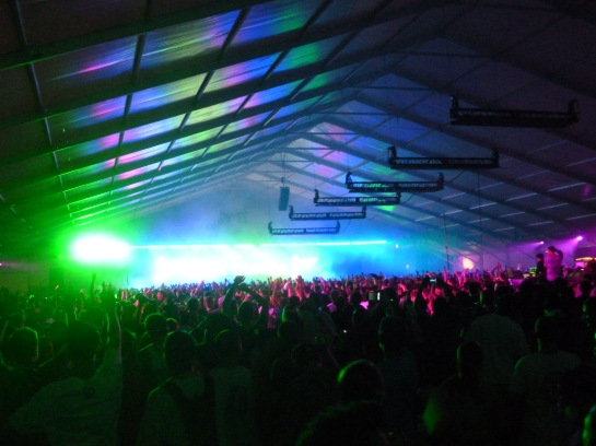A picture of electric zoo festival in 2011