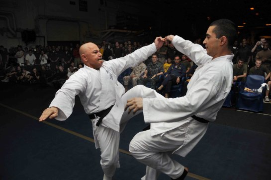 A picture of martial artists performing karate kata